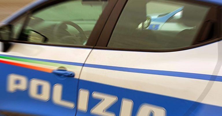"""Polizia, ultime: Un istrice a spasso di notte nel centro di Pescara: le Volanti riescono a """"catturarlo"""" sul lungofiume dei Poeti"""
