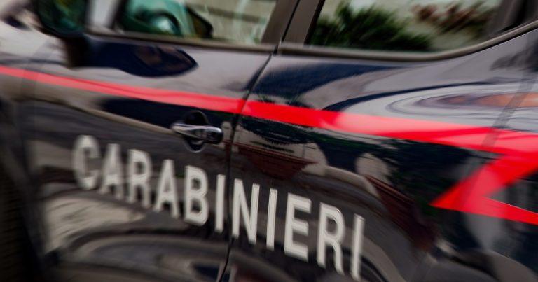 Carabinieri, comunicato: Deteneva un cinghiale illegalmente nel Chietino, denunciato =